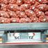 180 тонн лука из Казахстана не прошли фитосанитарный контроль в Алтайском крае